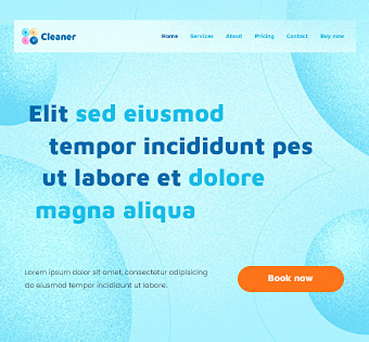 cleaner3